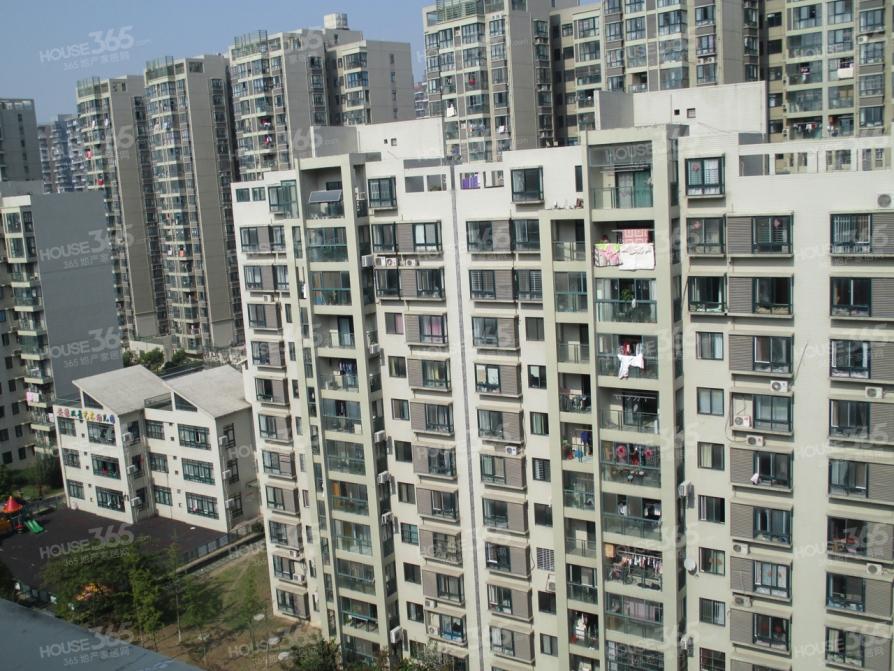 武里山天街精装公寓,急租,价格可谈