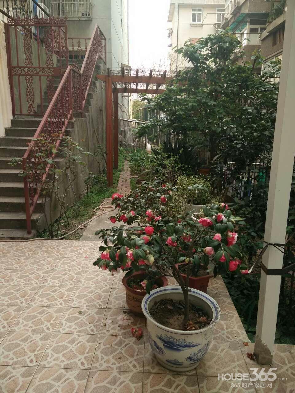 100种院子,太漂亮了!总有一座你喜欢的!图片