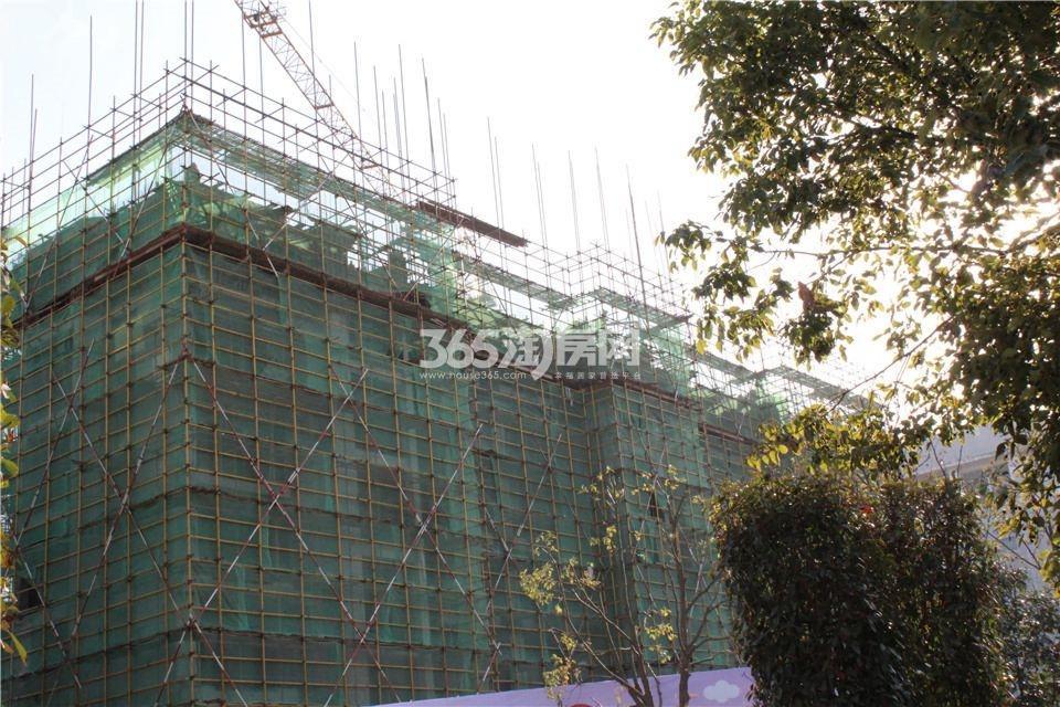 光辉岁月2014年12月工程进度