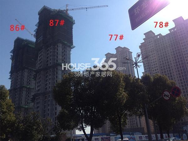 大名城77、78、87、88#工程进度(2015.2)