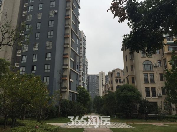华强城美加印象实景图(2016年10月摄)