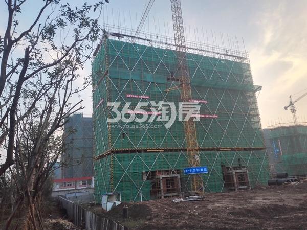 绿地工润和平壹号三期实景图3(11.10)