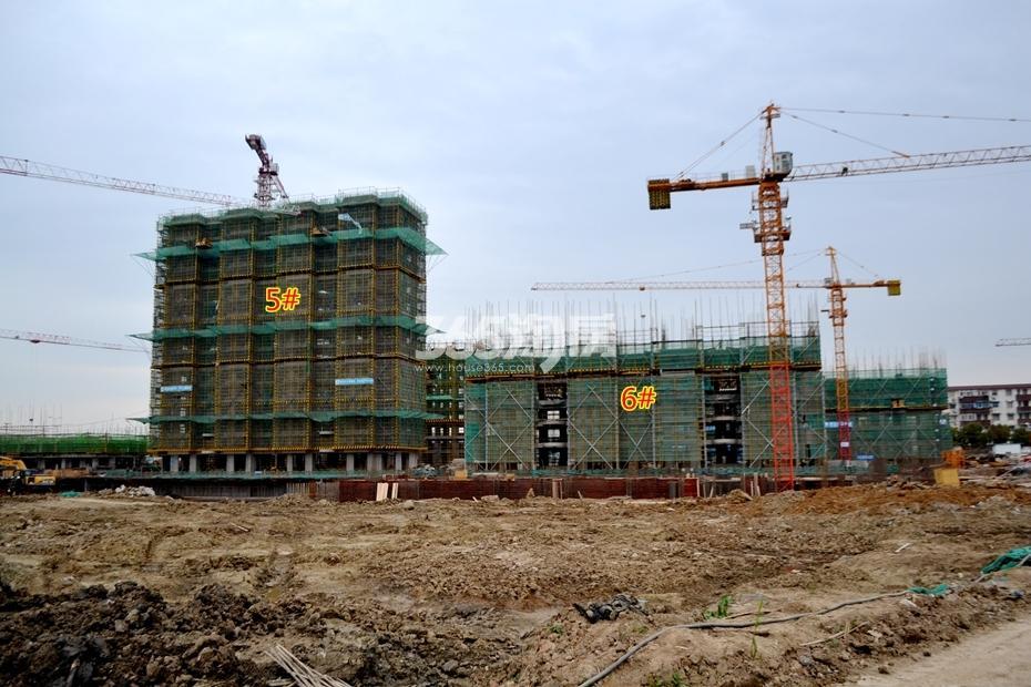 东方蓝海工程进度(2017.3摄)