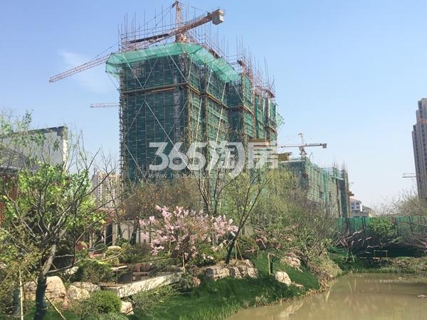 蓝光雍锦里高层工程进度实景图(2017.4 摄)