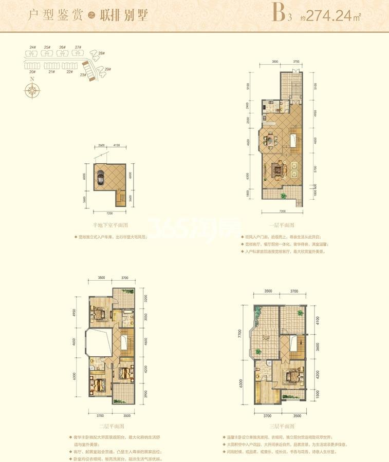 信德半岛别墅B3联排别墅户型图