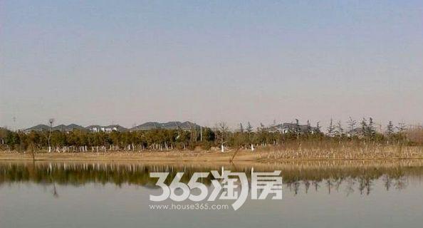 紫云赋江山印周边配套公园实景图(8.16)